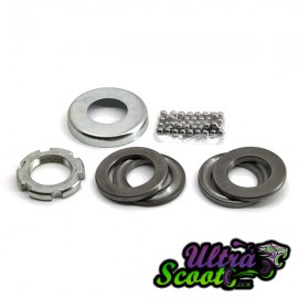 Fork Bearing Kit Tnt